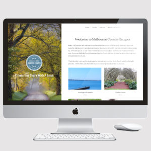 Tourism and travel website design